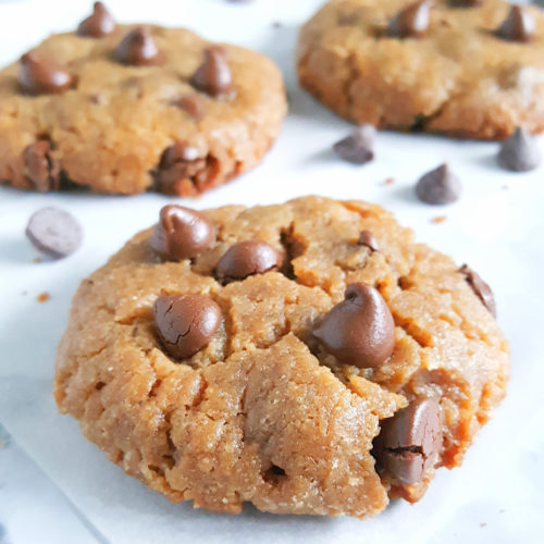 Gluten Free Peanut Butter Chocolate Chip Cookies - THE BEST recipe for Flourless and Dairy-Free Peanut Butter Chocolate Chip Cookies. Easy, one bowl, and simply delicious!