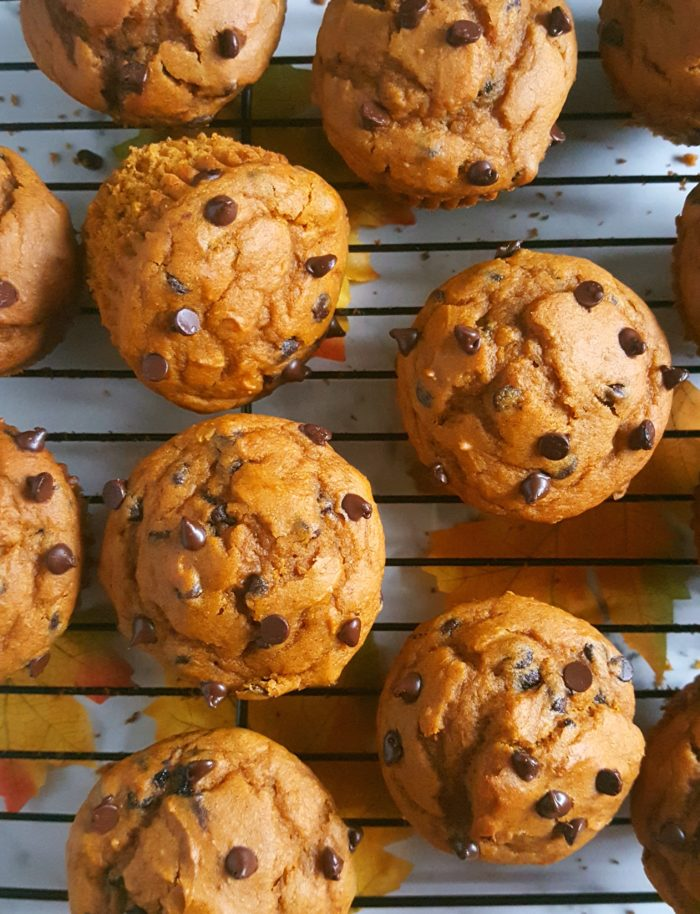 Cake Mix Chocolate Chip Pumpkin Muffins -Easy pumpkin muffin recipe made with cake mix and chocolate chips.This one-bowl recipe makes for a delicious and homemade fall breakfast or snack!